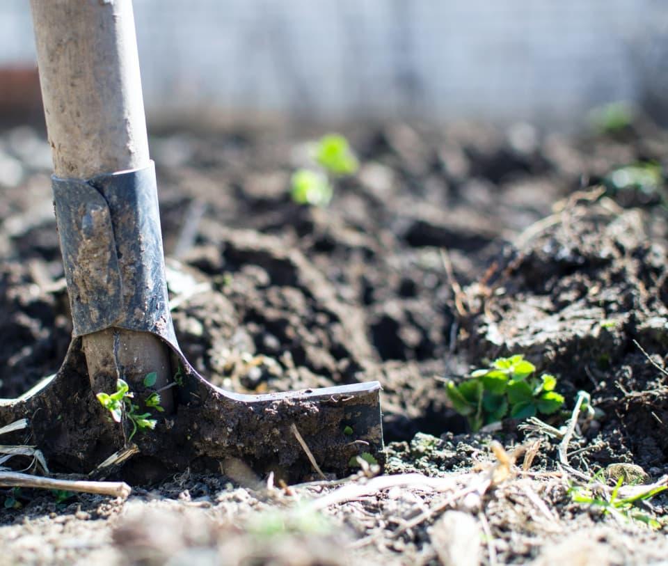 Βελτίωση χώματος