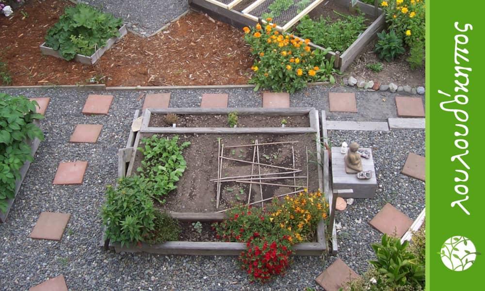 παρτέρια σε κήπο